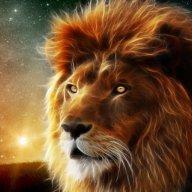 leon.rockyrock