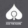 AceTheName