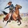 domaincowboy
